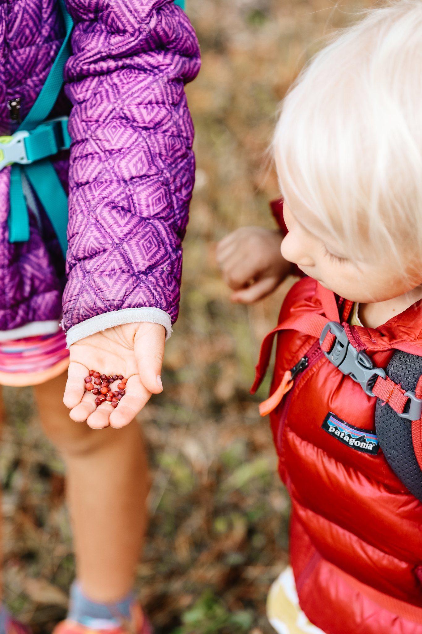 Backpacking With Kids Wild Blue Family
