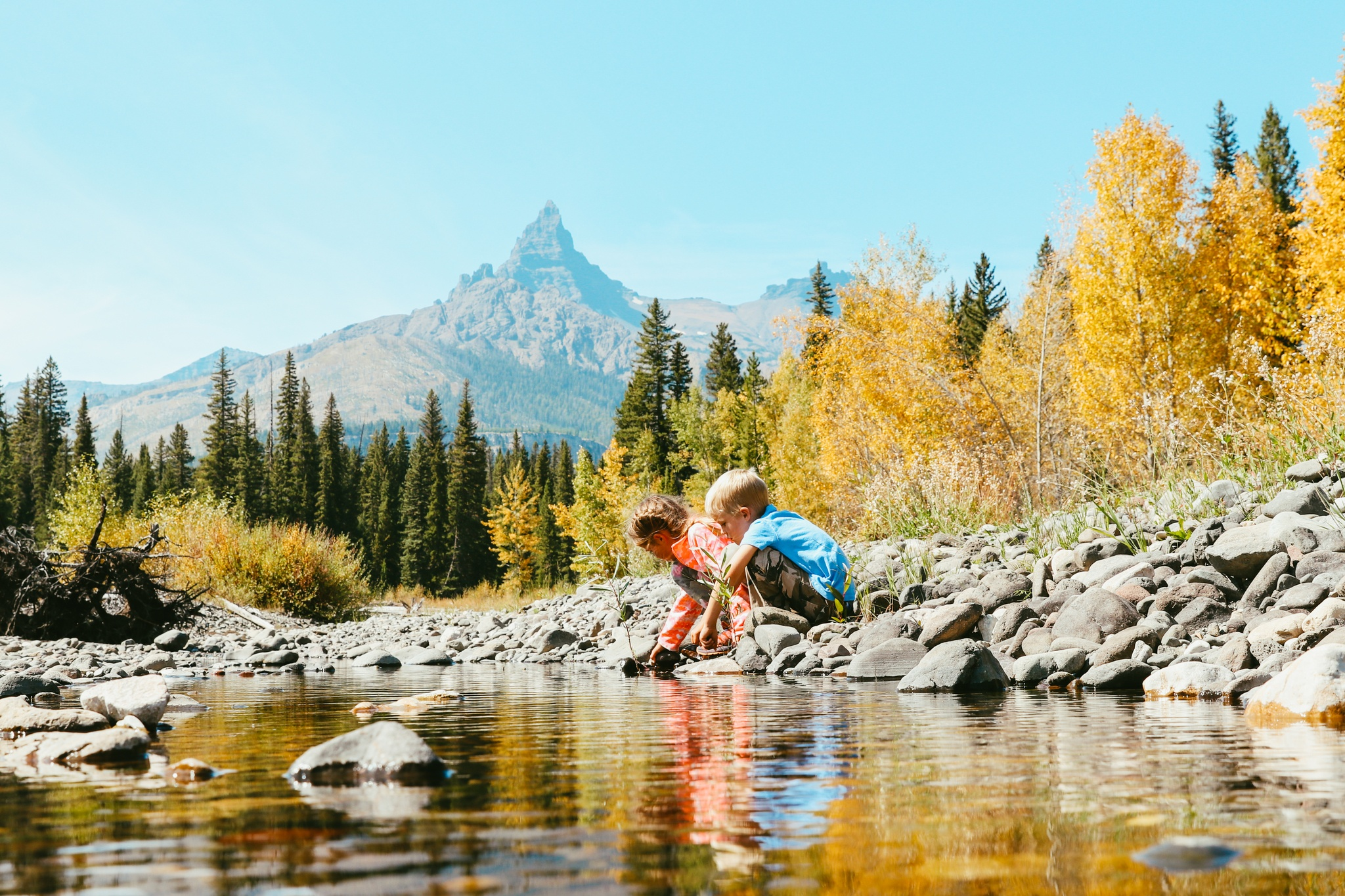 Kids playing in the river, Aspens in the fall, Pilot - Index, Wyoming